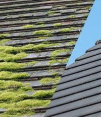 Le printemps approche, faites, faire un devis pour le démoussage de votre toiture à La-Haye-du-Puits !